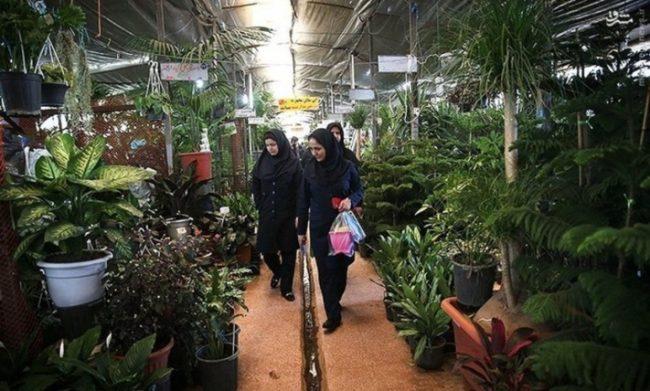 باغ گل های تهران