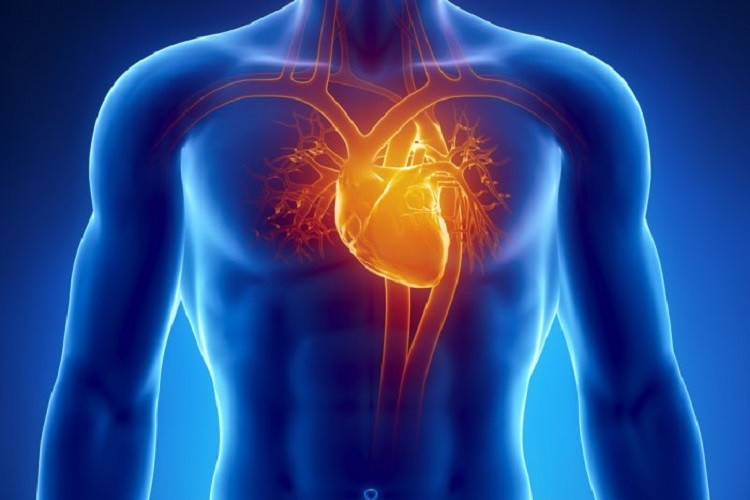 رفع گرفتگی عروق قلب