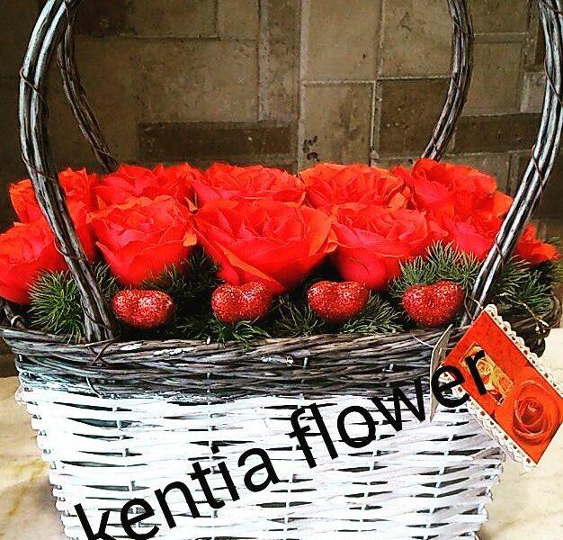 kentiaflowers (1)