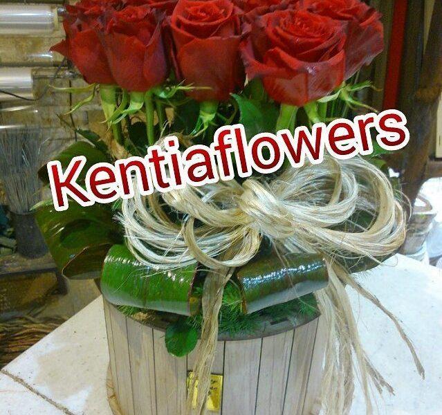 kentiaflowers (10)