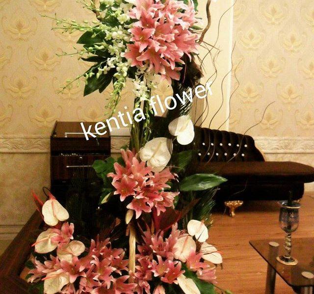 kentiaflowers (6)